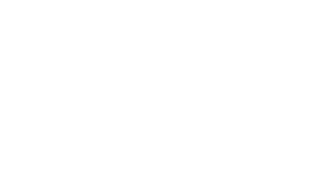 Logo WolfBrothers