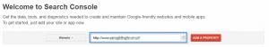 dodanie witryny do google search consol